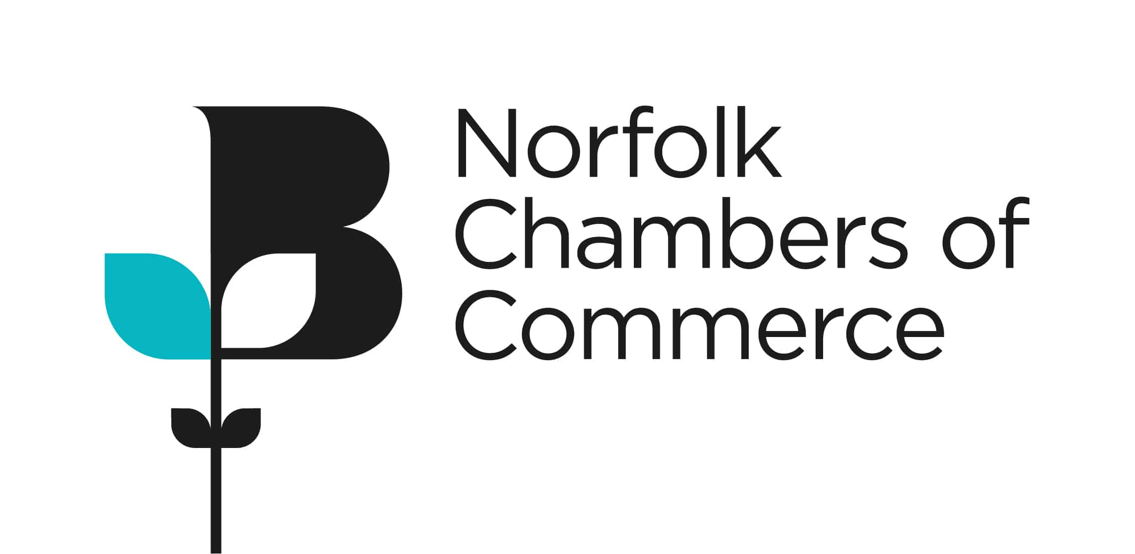 Norfolk Chambers of Commerce logo